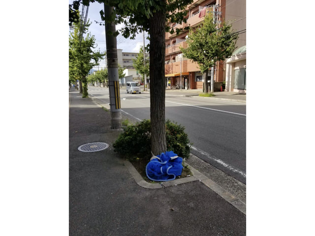 【京都市右京区の不動産会社・アンクルホームの不動産賃貸管理業務】監視カメラを設置しました③