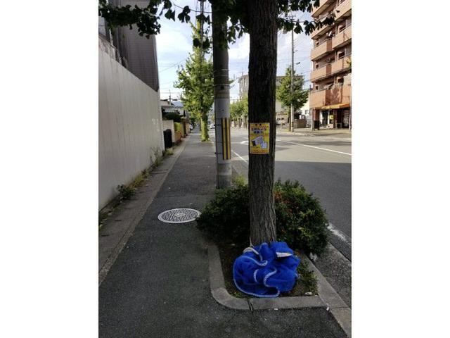 【京都市右京区の不動産会社・アンクルホームの不動産賃貸管理業務】監視カメラを設置しました④